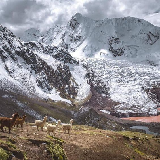Ausangate Snowy peak