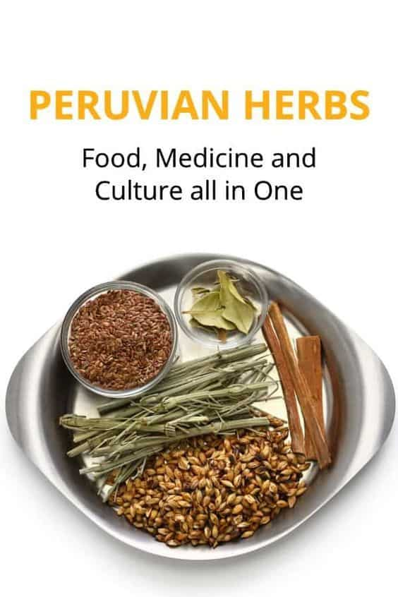 Food Medicine And herbs